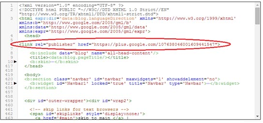 Google Publisher Code